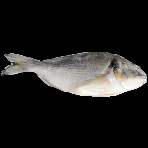 Frozen farmed whole sea bream 250/300g - 1pc