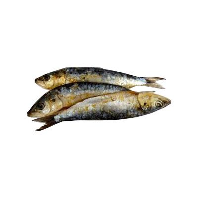 Frozen whole sardines - 1Kg